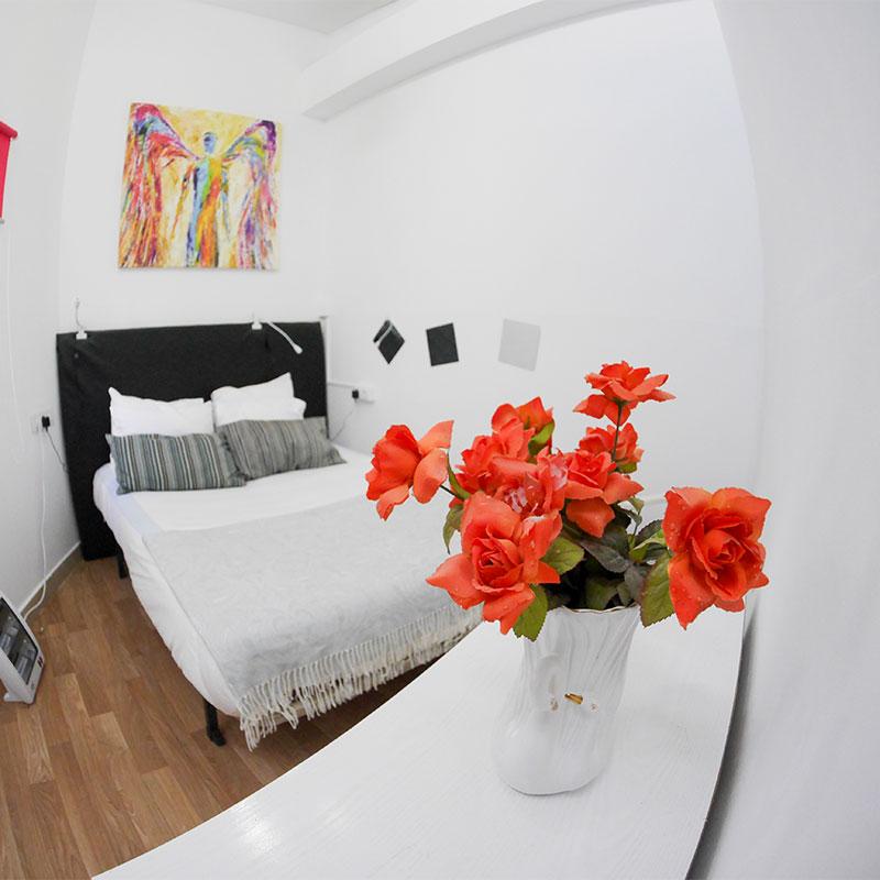 drago nest  hostel tenerife rosas